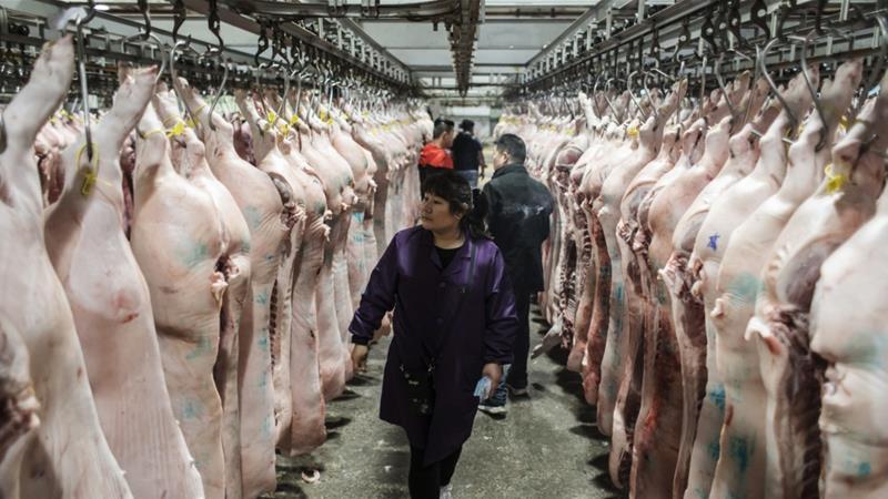 Buy Pork in China
