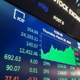 Insights of Zom Stock