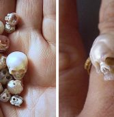 Tips For Selecting The Best Skull Jewelry